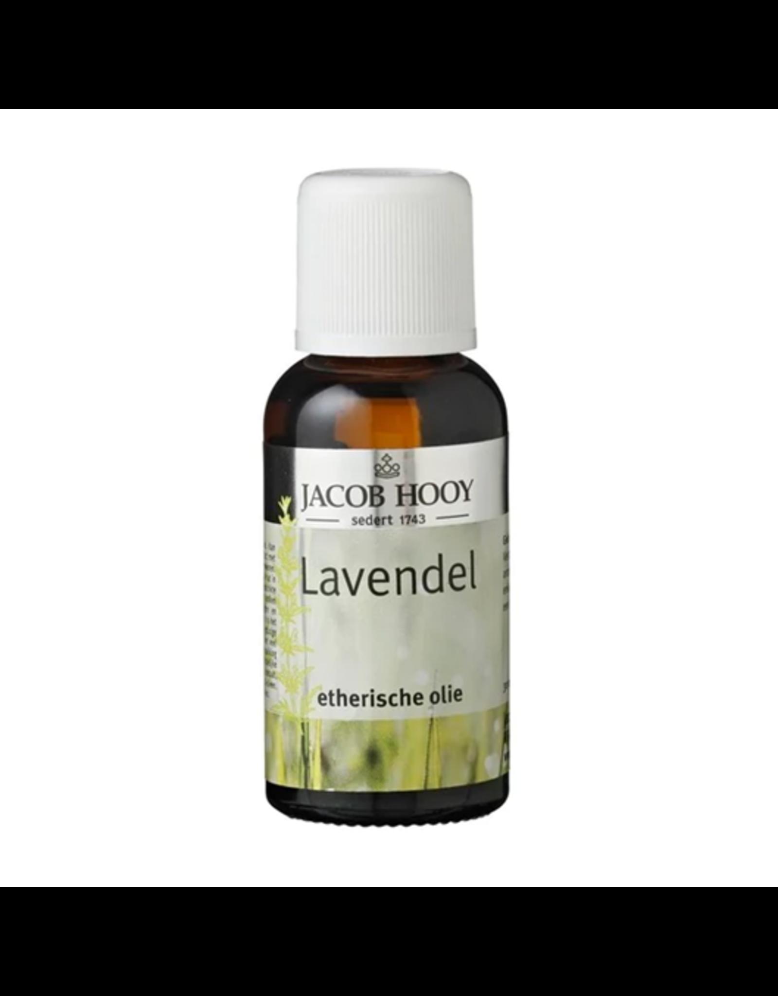 Jacob Hooij Lavendel