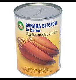 X.O. Brand Bananen Bloesem in zout water
