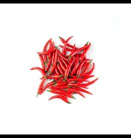 Karsten Red chili - Rawit