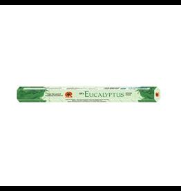 G.R. International Eucalyptus