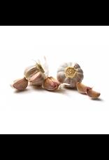 Knoflook Rose - Frans