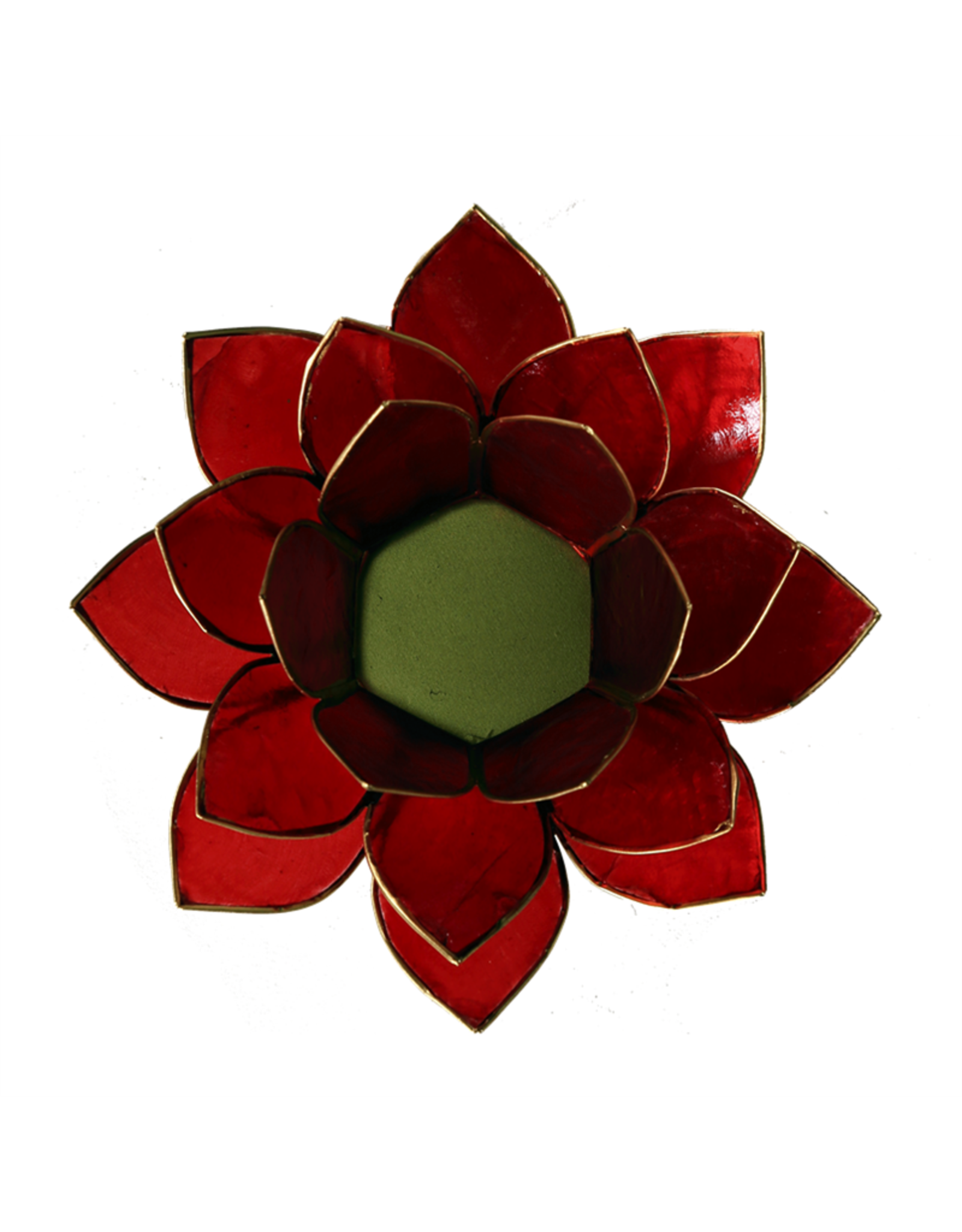 Lotus Rood met Goudrand