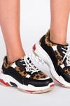 Walking on leopards