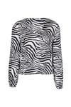 Zebra blouse