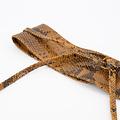 Lily - Snake - Waist belts - Brown - 6 -