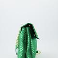 Evi - Slangen - Crossbodytassen - Groen -  - Goudkleurig