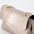 Evi Small - Metallic - Crossbody bags -  - 523 - Gold
