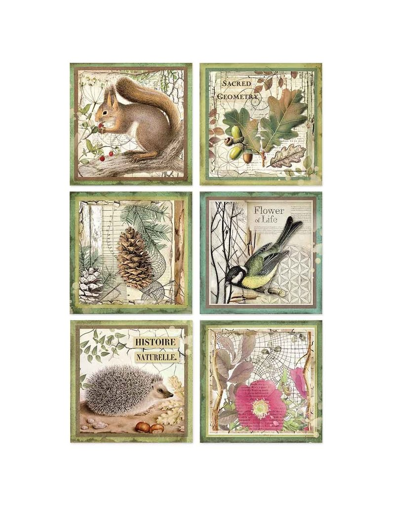 Stamperia A4 Rice paper packed Forest framed animals