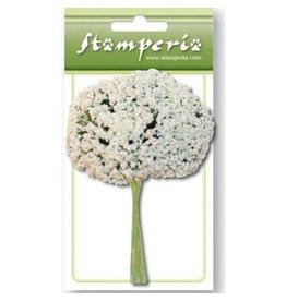 Stamperia White Gipsofila