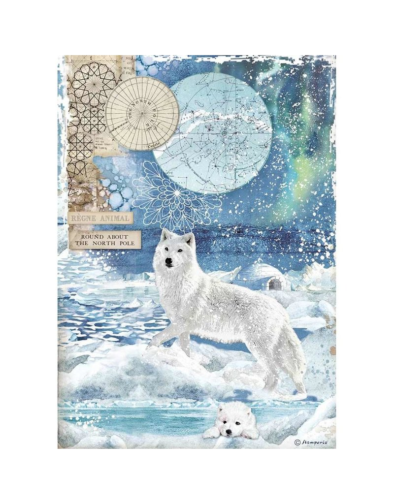 Stamperia A4 Rice paper packed Wolf