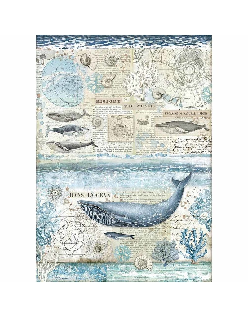 Stamperia A3 Rice paper packed History of the whale