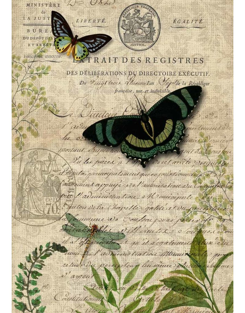 Decoupage Queen Butterfly Botanical A3
