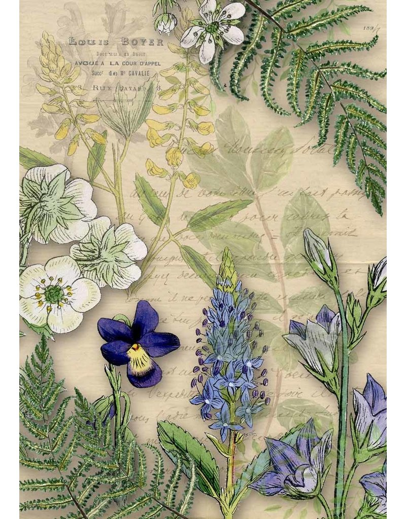 Decoupage Queen Botanical Letter with Wildflowers Rice Paper A4