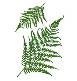Stamperia Stencil G cm.21x29,7 Fern leaves