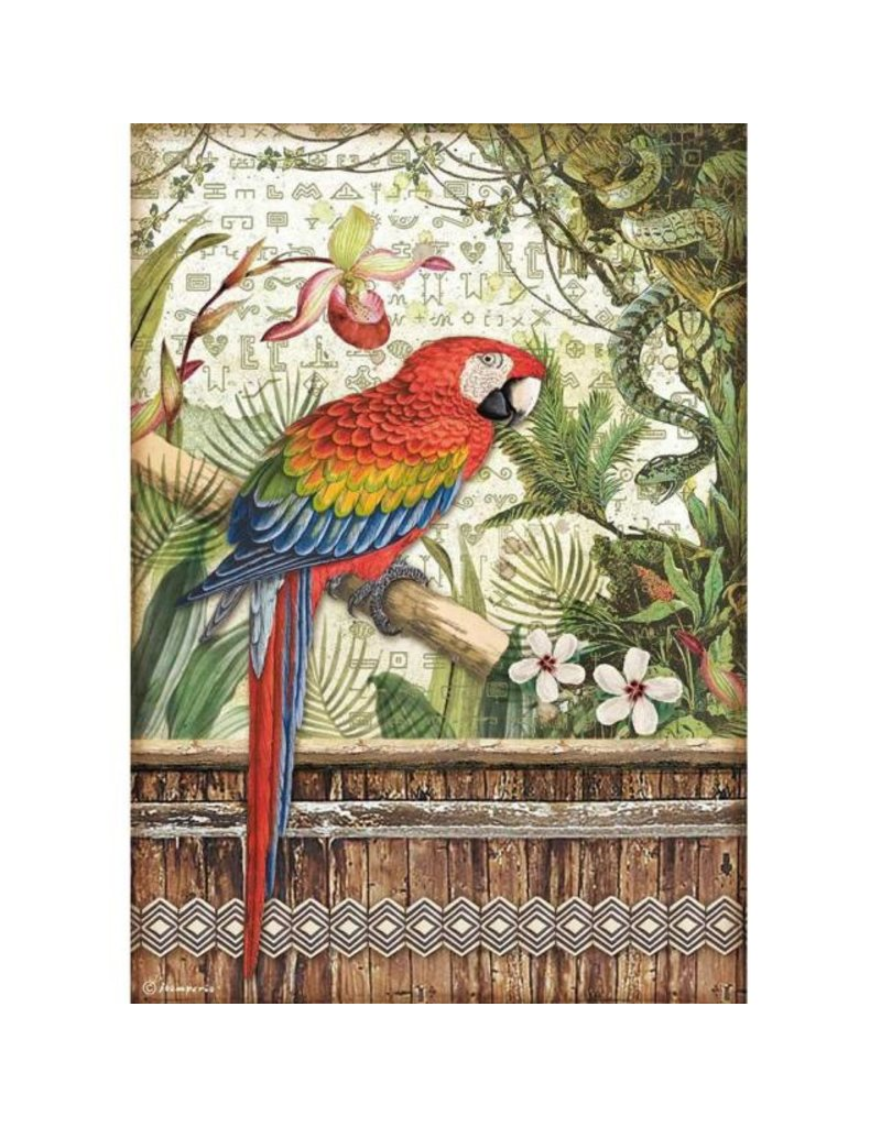 Stamperia A4 Rice paper packed - Amazonia parrot