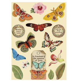 Stamperia Colored Wooden frame A5 - Amazonia butterfly