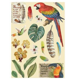 Stamperia Colored Wooden frame A5 - Amazonia parrot