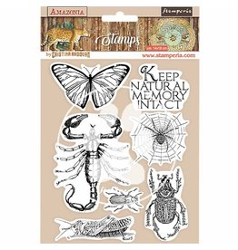Stamperia HD Natural Rubber Stamp 14x18 cm - Amazonia butterfly