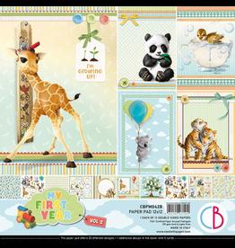"Ciao Bella My First Year Vol.2 Paper Pad 12""x12"" 12/Pkg"