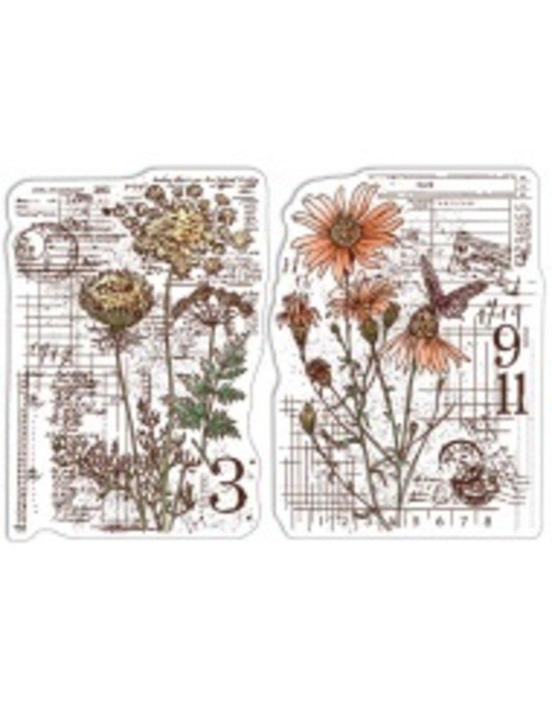 "Ciao Bella Clear Stamp Set 4""x6"" Botanical & Postmarks"