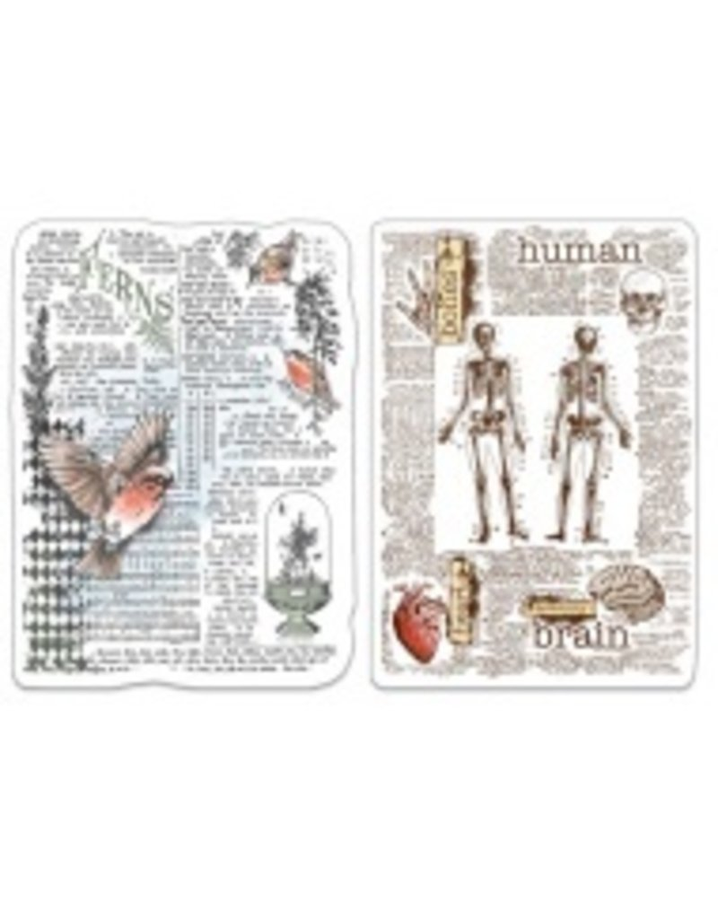 """Ciao Bella Clear Stamp Set 4""""x6"""" Human & Nature"""