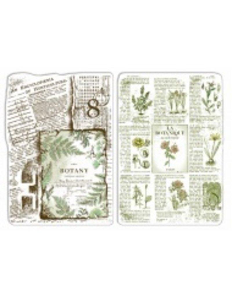 "Ciao Bella Clear Stamp Set 4""x6"" Botanical Horticulture"