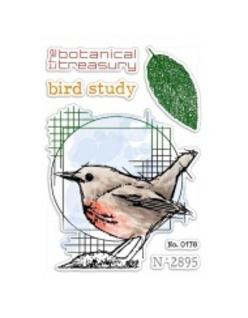 "Ciao Bella Clear Stamp Set 4""x6"" Bird Study"
