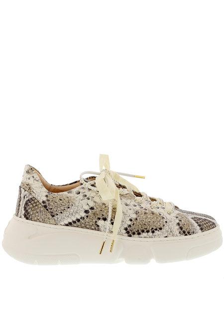 Attilio Giusti Leombruni sneakers D938001 taupe