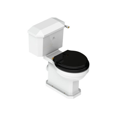 Charterhouse Close coupled toilet
