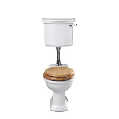 Bergier low level toilet