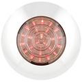 LED Autolamps  LED interieurverlichting chroom  12v. rood licht