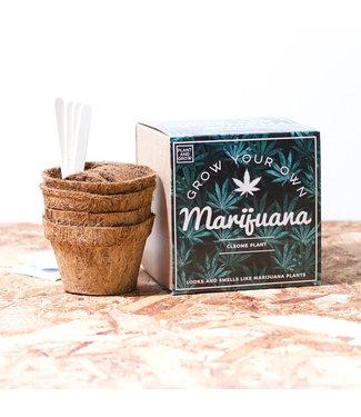 Firebox Grow Your Own Marijuana