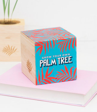 Firebox Grow Your Own Palm Tree