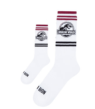 Eenmannenkado Zo Vader Zo Zoon/Dochter sokken Jurassic Athletic