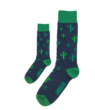 Eenmannenkado Zo Vader Zo Zoon/Dochter sokken Cactus
