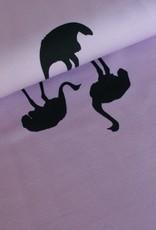Chat Chocolat Struisvogel