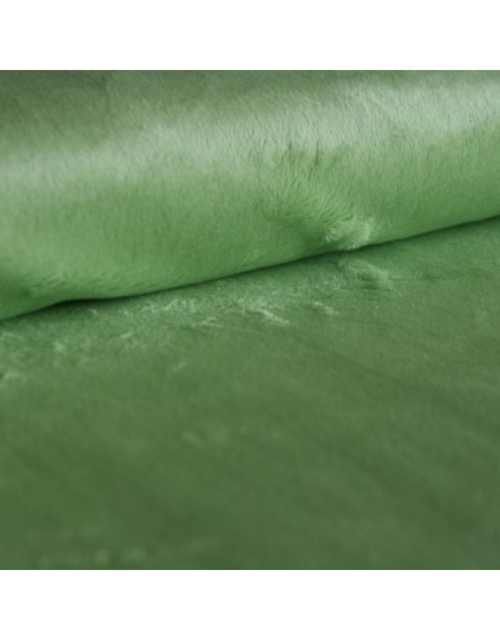 Shannon Fabrics Lime Green
