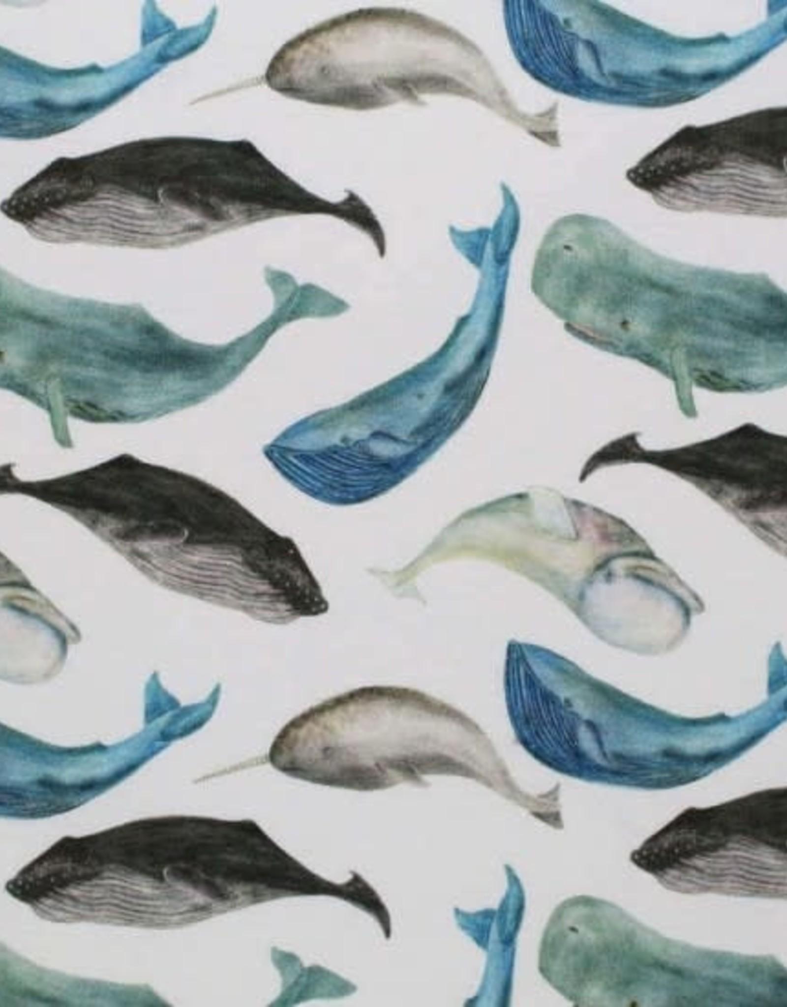 Stik-Stof Sea Animals