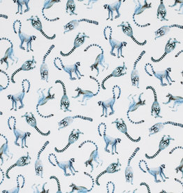 Stik-Stof Lemur monkey