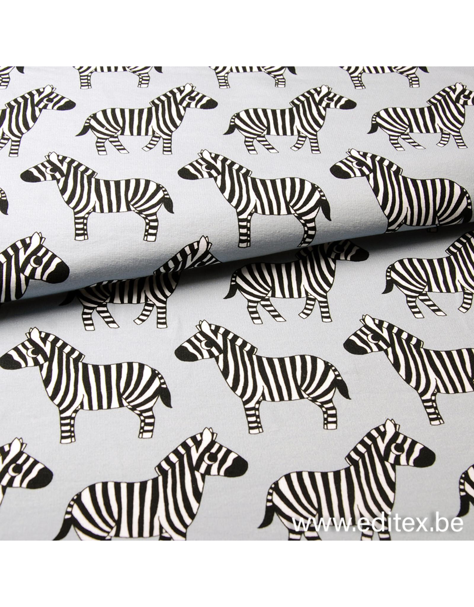 Eva Mouton Zebra