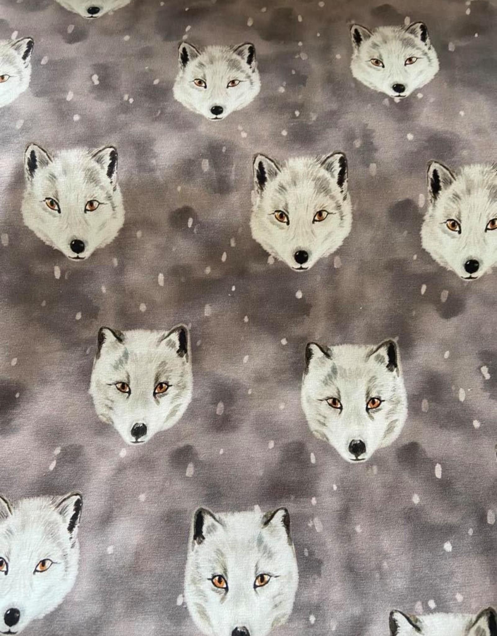 Family fabrics Fox grey