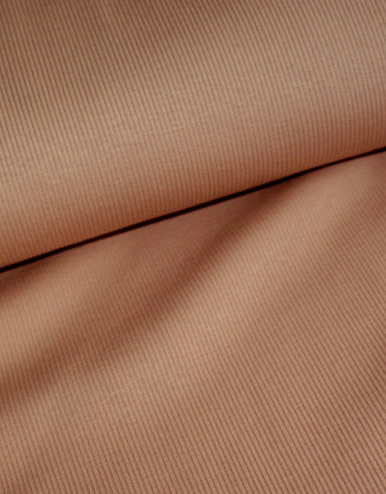 Family fabrics Sandstorm rib jersey