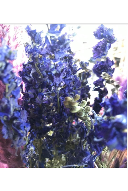 Flowerbar - Delphinum