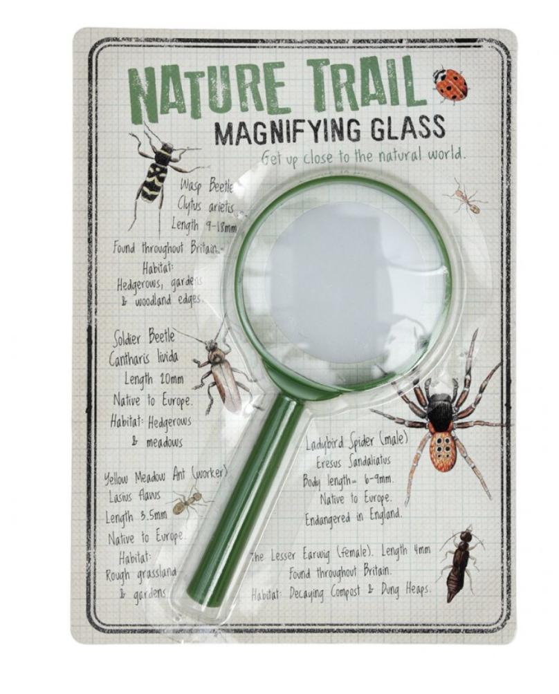 Vergrootglas Insecten-1