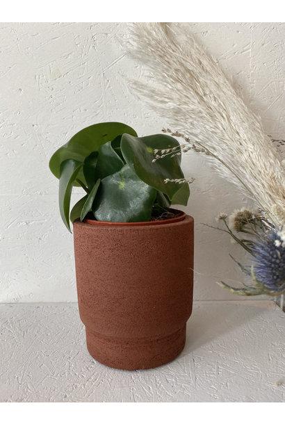 Bloempot New Terracotta