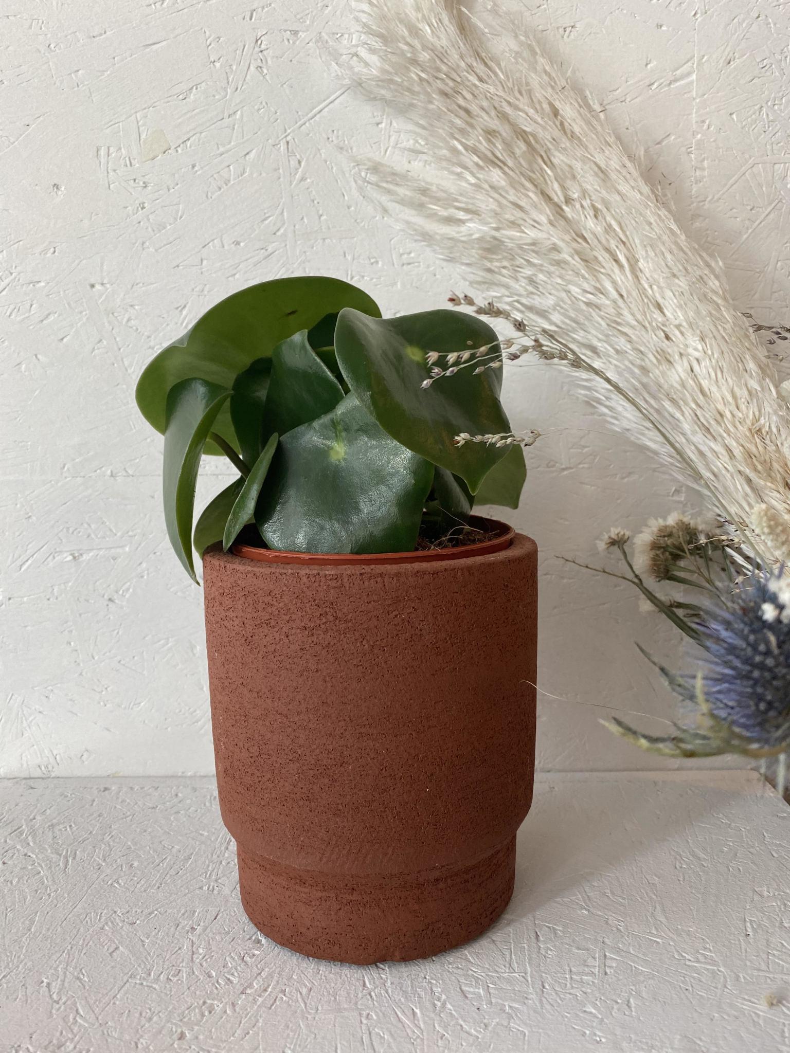 Bloempot New Terracotta-1