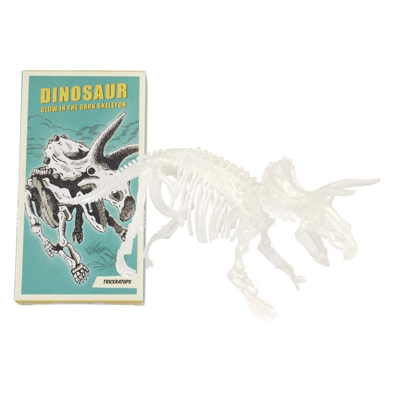 DHZ Dinosaurusskelet (Glow In The Dark) - Triceraptops-1