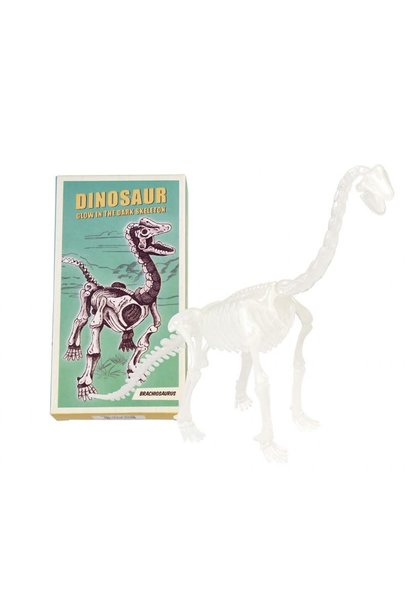 Dinosaur Skeleton Kit (Glow In The Dark) - Brachiosaurus