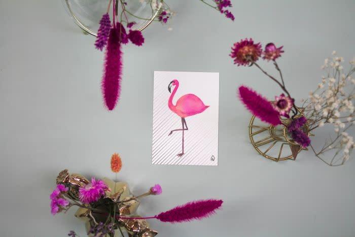 Postkaart Flamingo-3