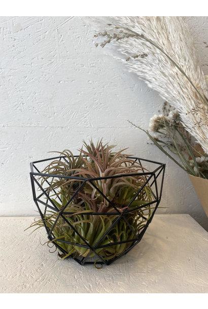Iron Basket Black - Small